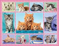 Cute Kittens, XXL 100 screen shot 1