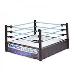 WWE SMACKDOWN Superstar Ring screen shot 1
