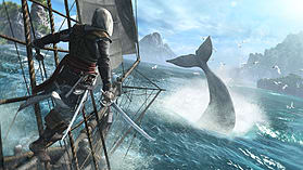 Assassin's Creed IV Black Flag & Assassin's Creed Rogue Double Pack screen shot 5