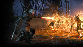 The Witcher 3: Wild Hunt screen shot 4