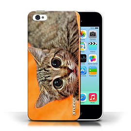 STUFF4 Phone Case/Cover for Apple iPhone 5C/Big Eye Cat Design/Funny Animals Collection Mobile phones