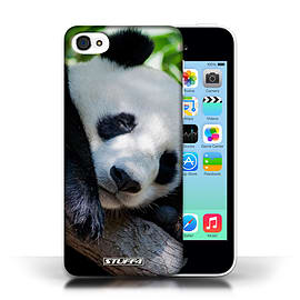 STUFF4 Phone Case/Cover for Apple iPhone 5C/Panda Bear Design/Wildlife Animals Collection Mobile phones