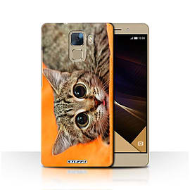 STUFF4 Phone Case/Cover for Huawei Honor 7/Big Eye Cat Design/Funny Animals Collection Mobile phones