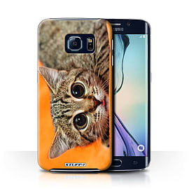 STUFF4 Phone Case/Cover for Samsung Galaxy S6 Edge/Big Eye Cat Design/Funny Animals Collection Mobile phones