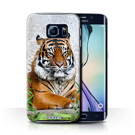 STUFF4 Phone Case/Cover for Samsung Galaxy S6 Edge/Tiger Design/Wildlife Animals Collection Mobile phones