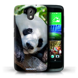 STUFF4 Phone Case/Cover for HTC Desire 526G+/Panda Bear Design/Wildlife Animals Mobile phones