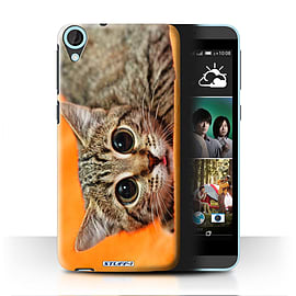 STUFF4 Phone Case/Cover for HTC Desire 820/Big Eye Cat Design/Funny Animals Mobile phones