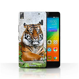 STUFF4 Phone Case/Cover for Lenovo K3 Note/K50-T5/Tiger Design/Wildlife Animals Mobile phones