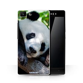 STUFF4 Phone Case/Cover for Oppo R5/Panda Bear Design/Wildlife Animals Collection Mobile phones