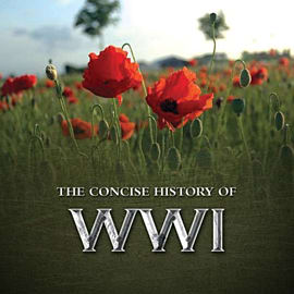 Concise History Of WWI Books