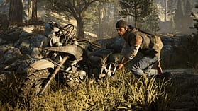 Days Gone screen shot 6