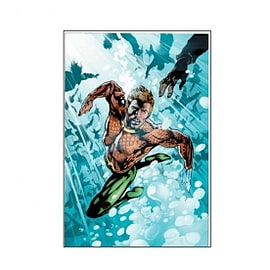 DC Comics Aquaman Subdiego Books