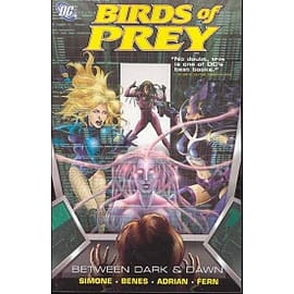 Birds Of Prey Between Dark And Dawn TP Books