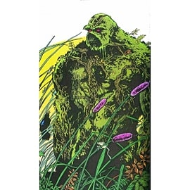 Saga Of The Swamp Thing HC Book 02 Books