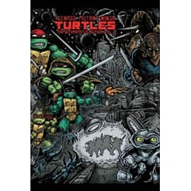 Teenage Mutant Ninja Turtles: The Ultimate Collection Volume 2 Books