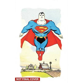 Superman for All Seasons Deluxe Edition Hardcover Books