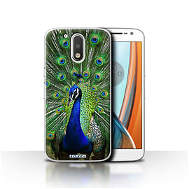 STUFF4 Case/Cover for Motorola Moto G4 2016 / Peacock Design / Wildlife Animals Collection Mobile phones