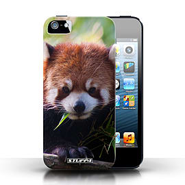 STUFF4 Case/Cover for Apple iPhone SE / Racoon Design / Wildlife Animals Collection Mobile phones