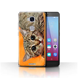 STUFF4 Case/Cover for Huawei Honor 5X/GR5 / Big Eye Cat Design / Funny Animals Collection Mobile phones