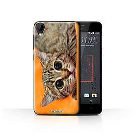 STUFF4 Case/Cover for HTC Desire 825 / Big Eye Cat Design / Funny Animals Collection Mobile phones