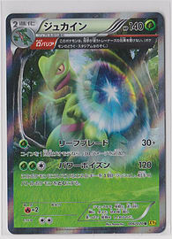 Japanese Holo 1st Edition Sceptile XY Series 006/070 Pokemon Card Trading Cards