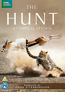 The Hunt (DVD) (C-PG) DVD