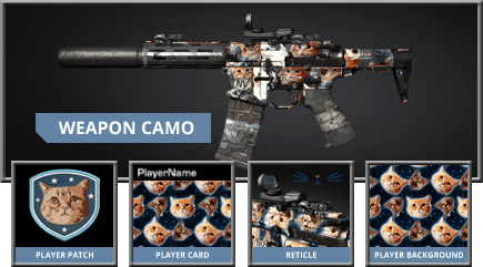 Call of Duty: Ghosts - Space Cats Weapon Camo