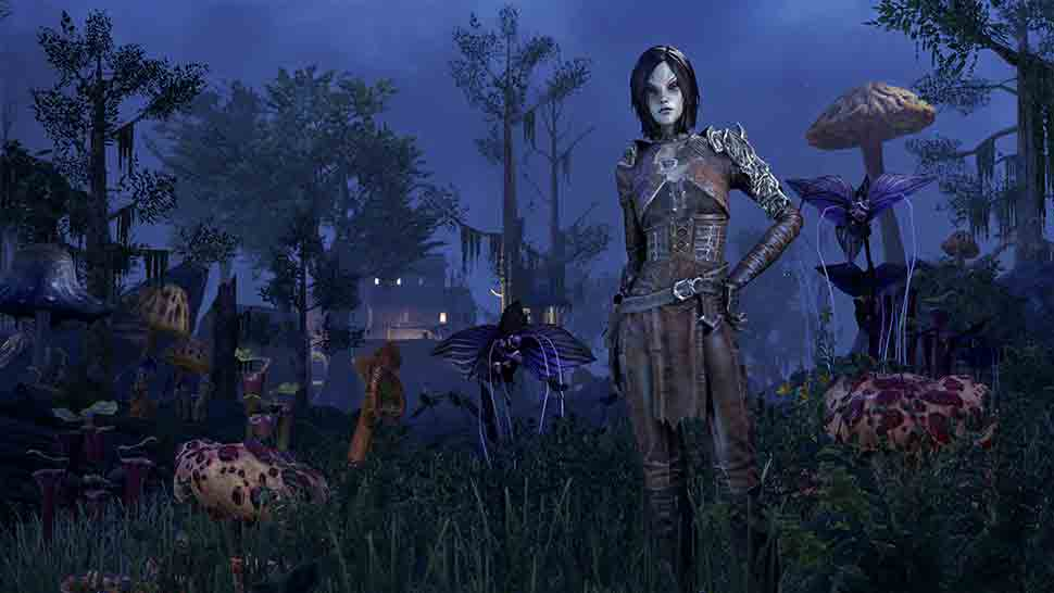 The Elder Scrolls Online Screenshot 03