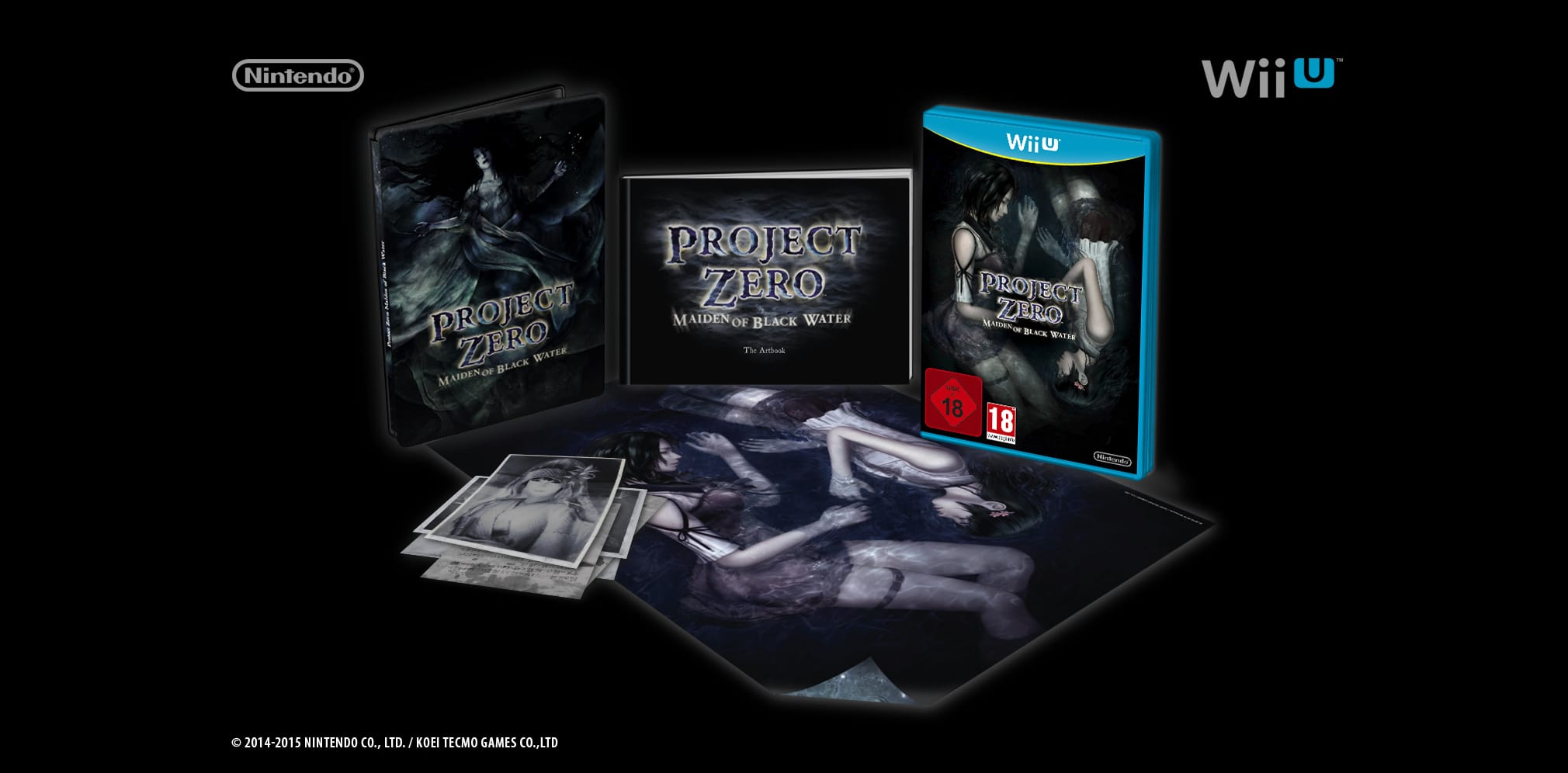 Buy Project Zero: Maiden of Black Water Limited Edition on Wii-U ...