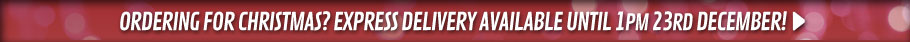 Ordering before Christmas? Express Delivery avaliable until 1pm 23rd December! - at GAME.co.uk!