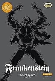 Frankenstein The Graphic Novel: Original Text (British English) (Paperback)Books