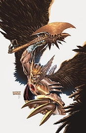 SAVAGE HAWKMAN DARKNESS RISING VOL 1Books