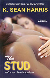 STUD, THE : A Novel (Paperback)Books