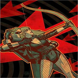 Green Arrow/Black Canary: The Wedding AlbumBooks
