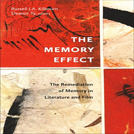 Memory Effect: The Remediation of Memory in Literature & Film (Hardcover)Books