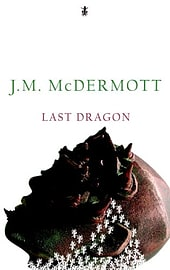 Last DragonBooks