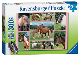 Horse Heaven, XXL 300Puzzles and Board Games