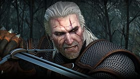 The Witcher 3: Wild Hunt screen shot 5