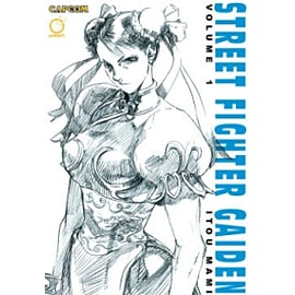 Street Fighter Gaiden Volume 1Books