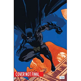 Absolute Batman Haunted Knight HardcoverBooks