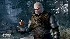 The Witcher 3: Wild Hunt GAME OF THE YEAR EDITION screen shot 11