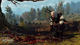 The Witcher 3: Wild Hunt GAME OF THE YEAR EDITION screen shot 12