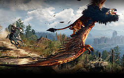 The Witcher 3: Wild Hunt GAME OF THE YEAR EDITION screen shot 2