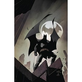 Batman Volume 9: Bloom HardcoverBooks