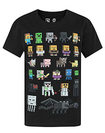 Minecraft Sprites Boy's Black T-Shirt (12-13 Years)Clothing and Merchandise