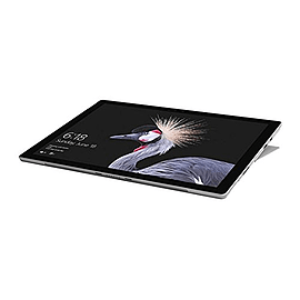 Microsoft Surface Pro Intel Core i7 12.3 IPS Microsoft Windows 10 Pro Silver 1TB Tablet,Tablet